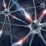 Neuro Web Design: 7 principi per rendere il nostro sito più interessante