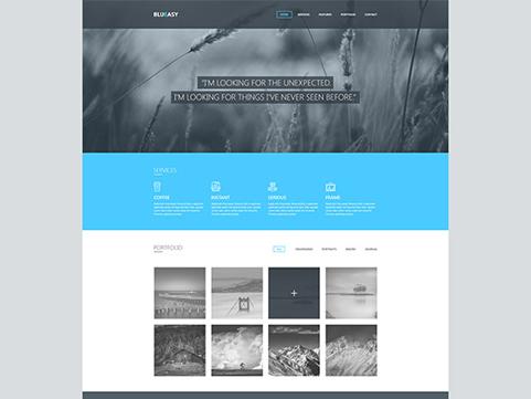 blueasy-website-template