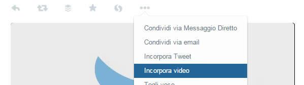 Twitter Video embedded